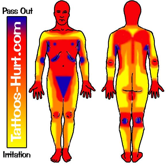 Tattoo pain areas - courtesy of Tattoos-hurt.com